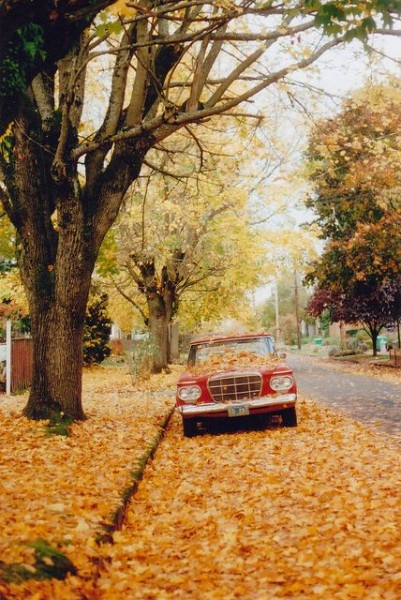 classic red car covered in golden fall leaves