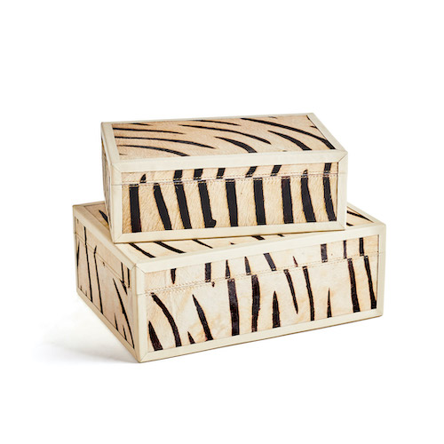 Set of Decorative Zebra Boxes GDC Home