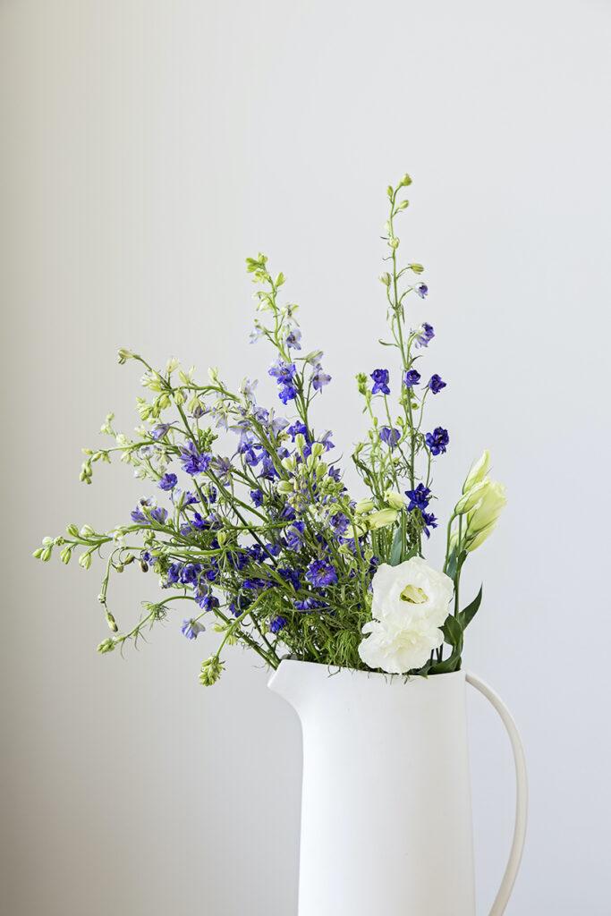 Springtime Flowers for Your Home